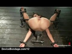 Folded over bound babe caned and teats suctioned