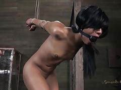 Isn't Nikki a fascinating angel and hawt too? She's tied, blindfolded and face hole gagged with a ball. A big black male pumps her from behind and rips Nikki's pussy before taking care of her mouth. His white buddy comes to aid him chastise this floozy and fucks her ass from behind also whilst the black one unfathomable mouths her