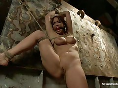 Nicki Hunter is a red haired milf who enjoys having fellows around her while she is tied up with ropes. The hot honey likes having her mouth gagged, coz she knows she will screech if it wouldn't be for that cute ball gag. Dude comes and removes her ballgag, and begins to fuck her pussy, slamming her on the wall.